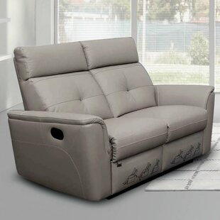 Alexia Leather Reclining Loveseat by Latitude Run