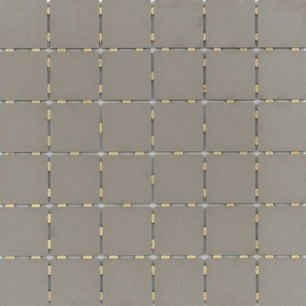 Zone 2 x 2 Porcelain Mosaic Tile in Matte Taupe by Emser Tile