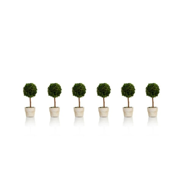 Ball Desktop Boxwood Topiary in Pot Set (Set of 6) by Darby Home Co