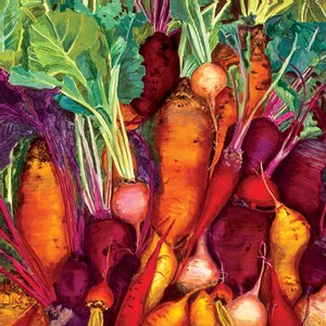 'Root Vegetables' by Judith Jarcho Graphic Art on Canvas by GreenBox Art