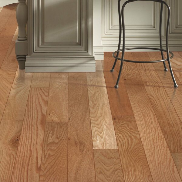 Barletta 3-1/4 Solid Oak Hardwood Flooring in White Natural by Mohawk Flooring