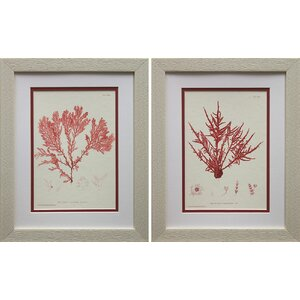 Nature Print III & IV by Vision Studio 2 Piece Framed Graphic Art Set by Beachcrest Home