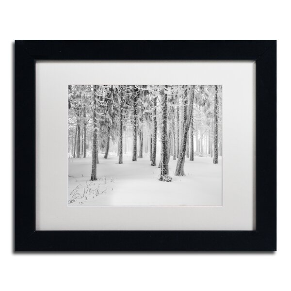 Frozen World by Philippe Sainte-Laudy Framed Photographic Print by Trademark Fine Art
