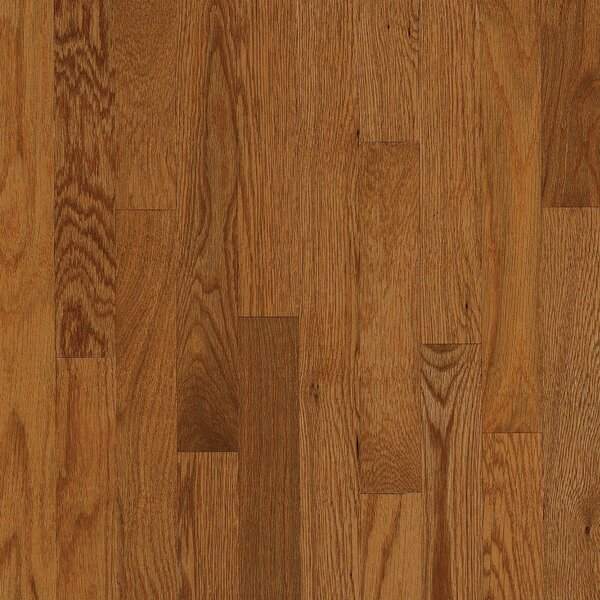 2-1/4 Solid Oak Hardwood Flooring in High Glossy Gunstock by Bruce Flooring