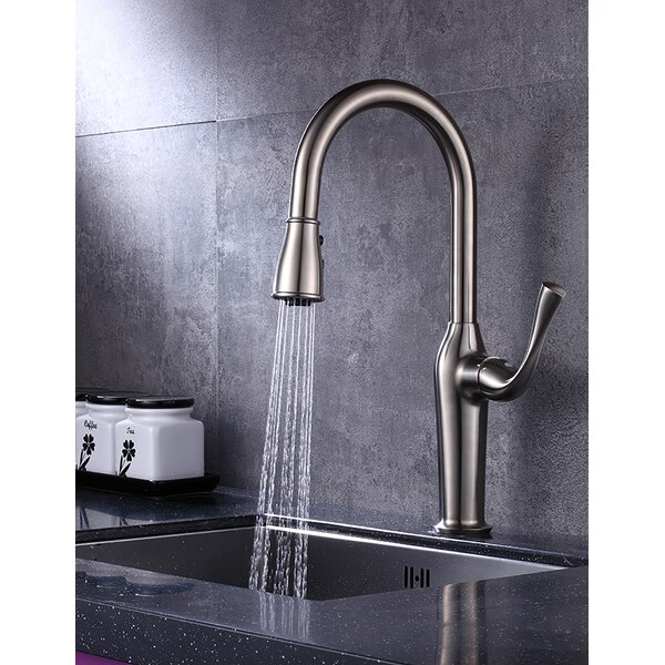 Sigrun F-Series Pull Out Single Handle Kitchen Faucet by Dazone Dazone