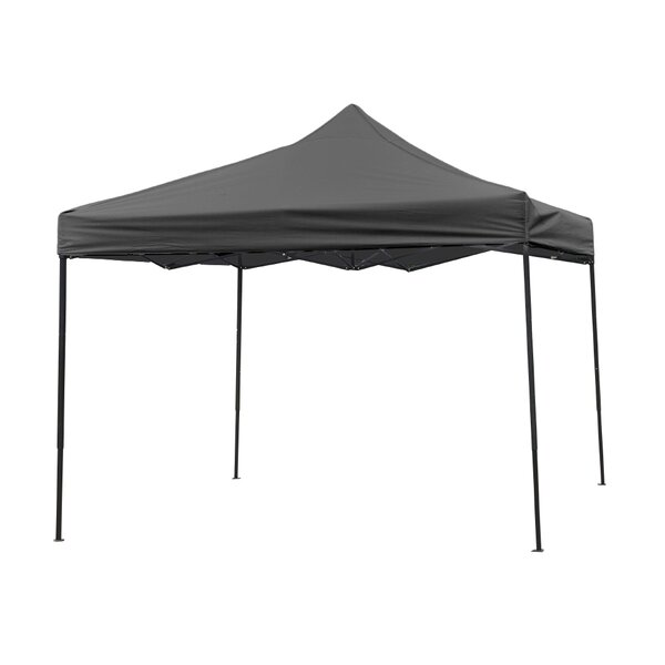 10 ft. x 10 ft. Pink Lightweight and Portable Canopy Tent Set by Trademark Innovations