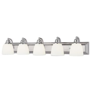 Deals Lakesway 5-Light Vanity Light By Darby Home Co