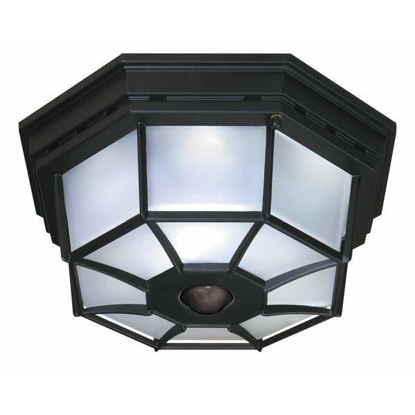 Motion Sensor Ceiling Light Wayfair