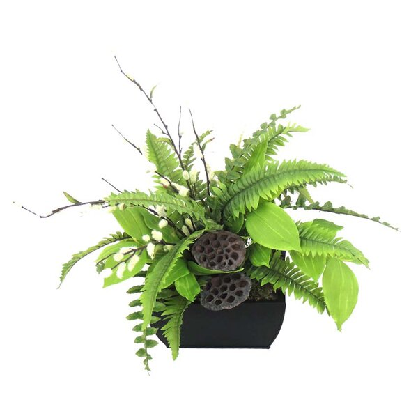 Greenery Desk Top Plant in Planter by Ivy Bronx