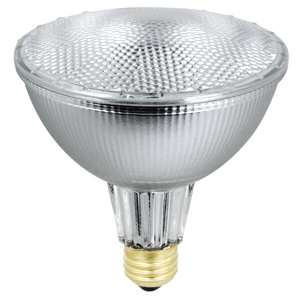 86W 120-Volt Halogen Light Bulb by FeitElectric