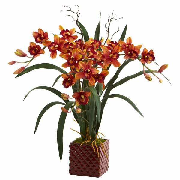 Cymbidium Orchid Floral Arrangement in Vase by World Menagerie
