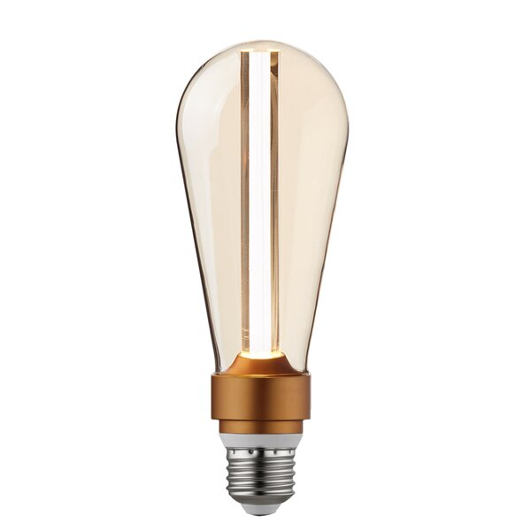 15W E26/Medium Dimmable LED S-Type Edison Light Bulb Amber by Globe Electric Company