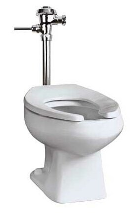 Baltic Commercial Dual Flush Elongated One-Piece Toilet by Mansfield Plumbing Products