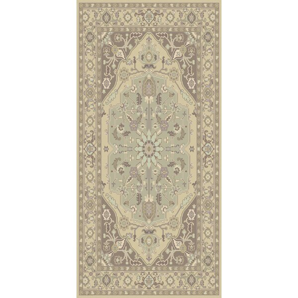 Bargamin Classic Grey/Mocha Area Rug by Darby Home Co