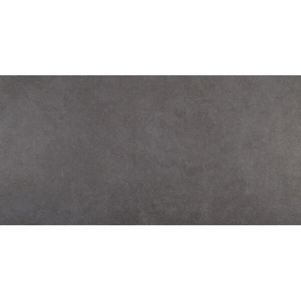 Haut Monde 24 x 48 Porcelain Field Tile in Empire Black by Daltile