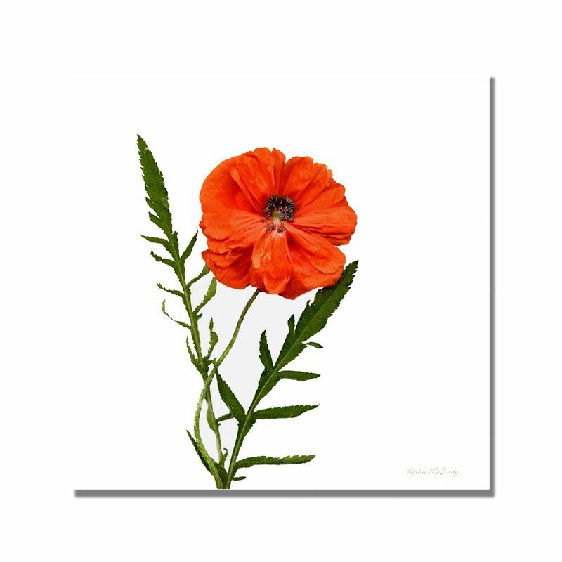 'Poppy' by Kathie McCurdy Graphic Art on Canvas