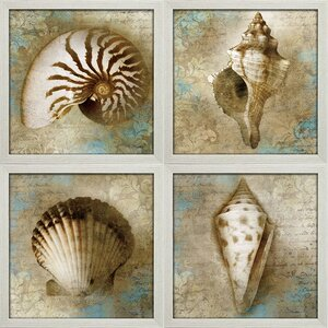 'Nautical Beauty' by Keith Mallet 4 Piece Framed Graphic Art Print Set by Star Creations