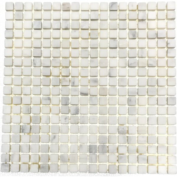 0.6 x 0.6 Natural Stone Mosaic Tile in White Statuary by Luxsurface