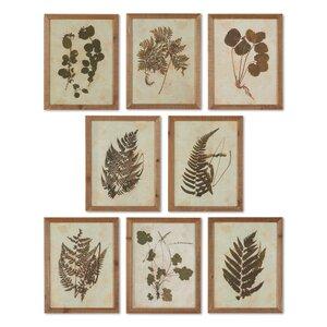 Botanical Specimen 8 Piece Framed Graphic Art Set by August Grove