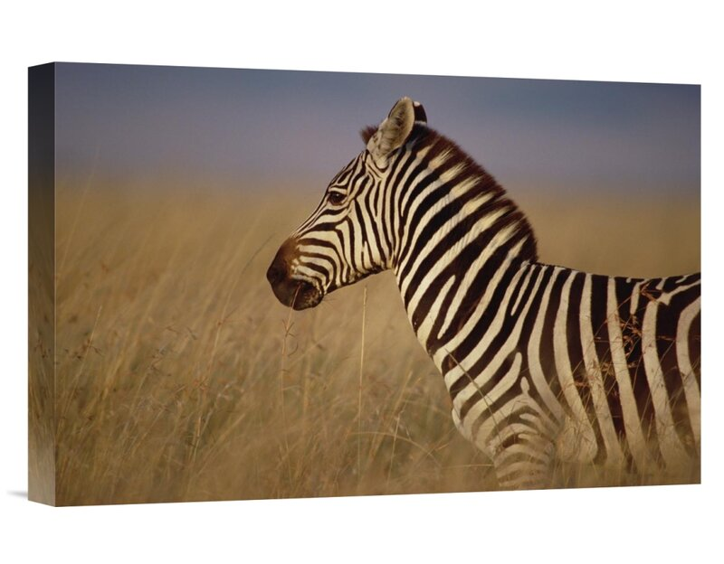 Masai Mara Game Reserve at Sunset Kenya Safari Giclee Canvas Picture Wall Art