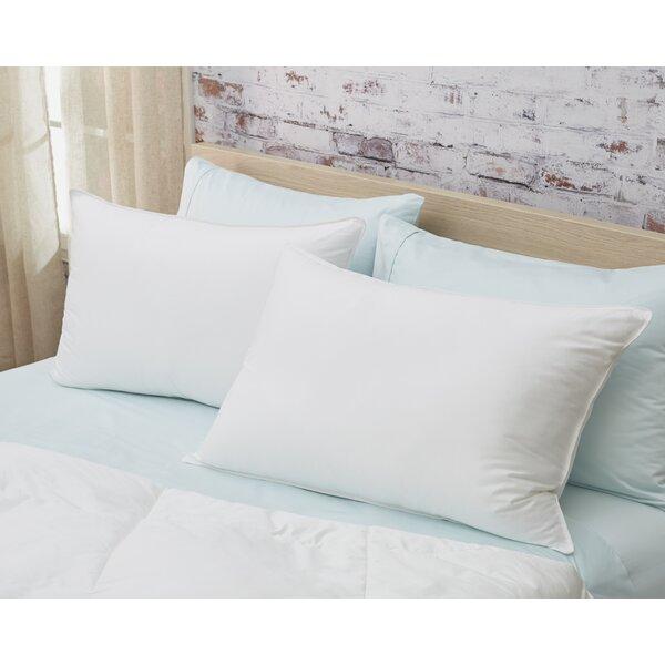 Down Alternative Pillow (Set of 2) by Alwyn Home