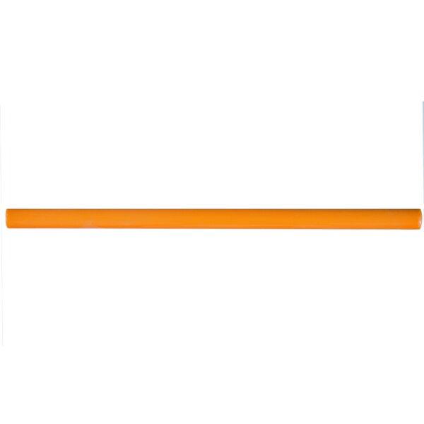 Bira 11.75 x 0.5 Ceramic Cana Cigarro Trim Liners/Pencil Liners Tile in Orange (Set of 5) by EliteTile