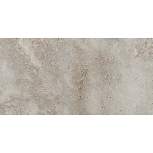 Lucerne 12 x 24 Porcelain Field Tile in Matterhorn by Emser Tile