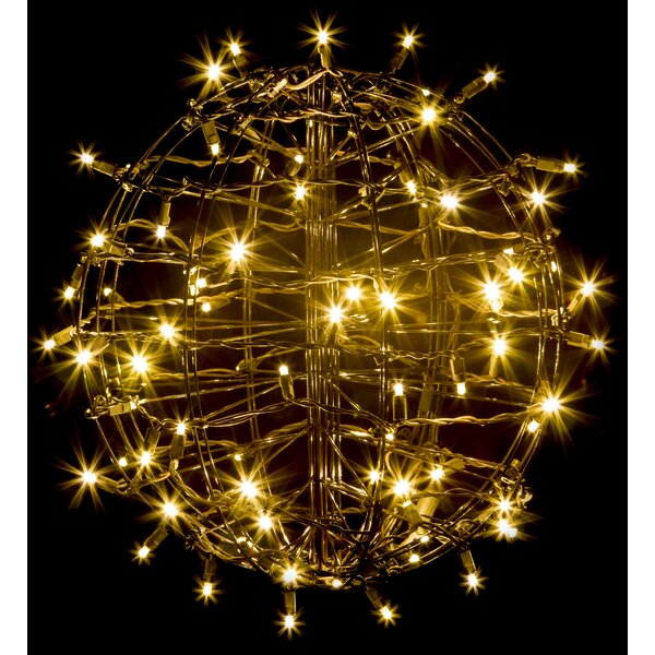 Grapevine Fold Flat Sphere Light with 75 LED Lights by The Holiday Aisle