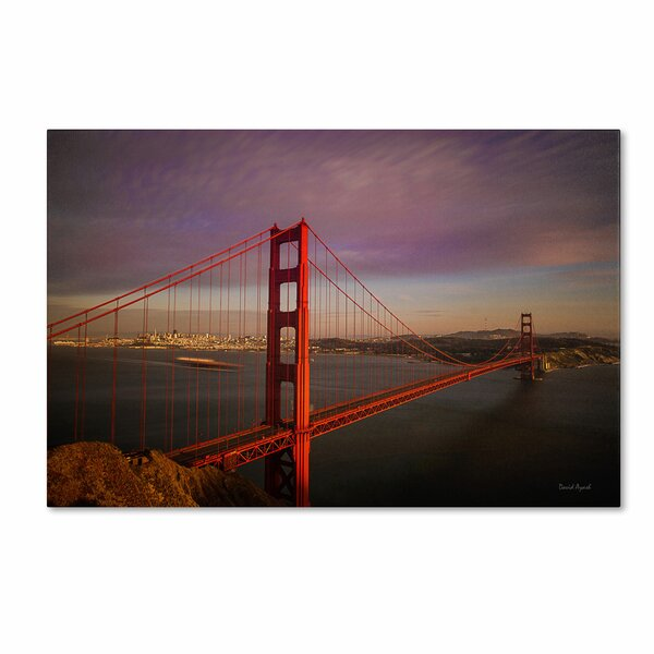 Golden Gate Bridge by David Ayash Photographic Print on Wrapped Canvas by Trademark Fine Art