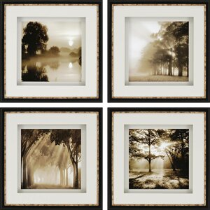 'Reflections' 4 Piece Photographic Print Set by Darby Home Co