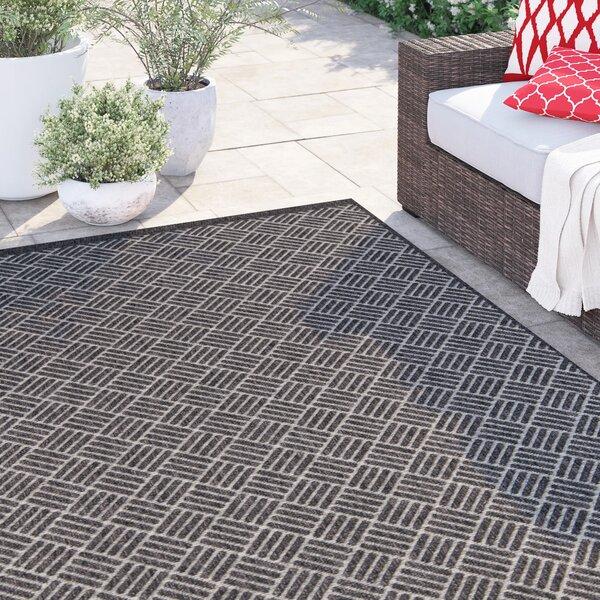 Amina Charcoal Indoor/Outdoor Area Rug by Sol 72 Outdoor
