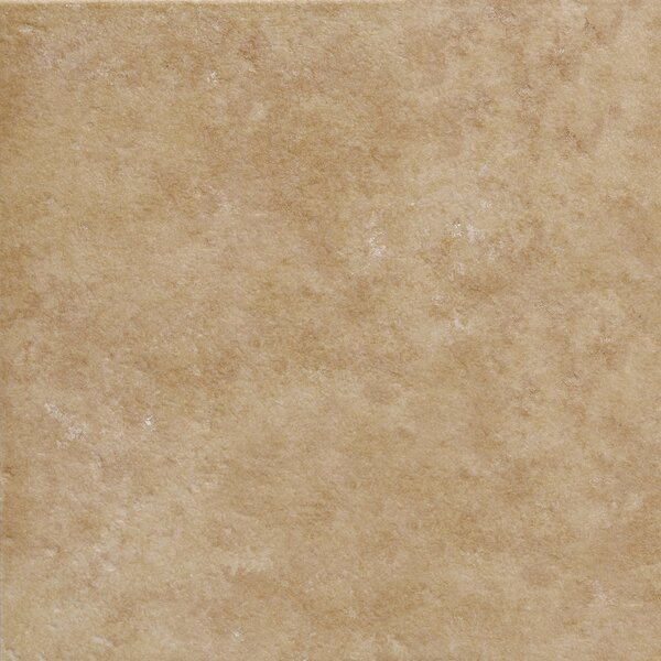 Pacific 6 x 6 Ceramic Field Tile in Noce by Emser Tile