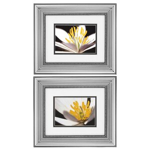 Poccoon I / II 2 Piece Framed Photographic Print Set by Alcott Hill