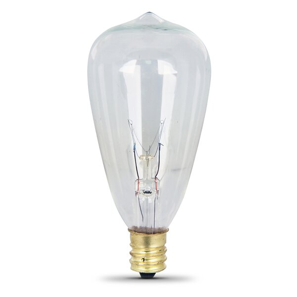 7W 120-Volt Incandescent Light Bulb (Set of 2) by FeitElectric