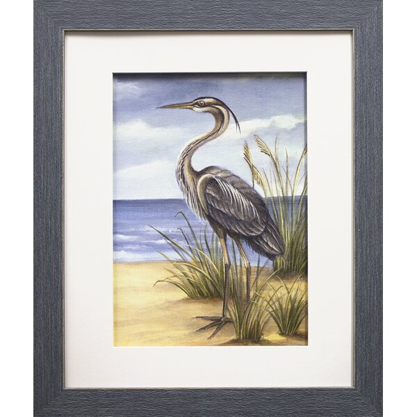 Shore Bird II by Ethan Harper Framed Painting Print by Star Creations