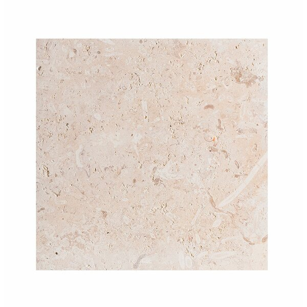 ShellStone Tile 18 x 18 Seashell Field Tile in Beige by Parvatile