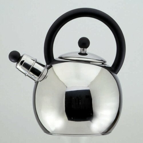 Oxford 2.5 L Stainless Steel Whistling Stove Top Kettle