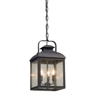 Find a Koffi 3-Light Outdoor Pendant By Gracie Oaks