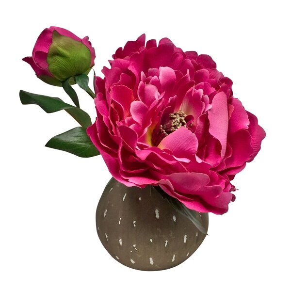 Korina Beauty Peony Centerpiece in Bud Vase by Bungalow Rose