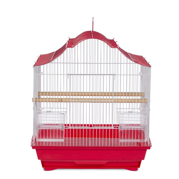 Tanya Pet Crown Top Cockatiel Bird Cage with Removable Tray by Tucker Murphy Pet