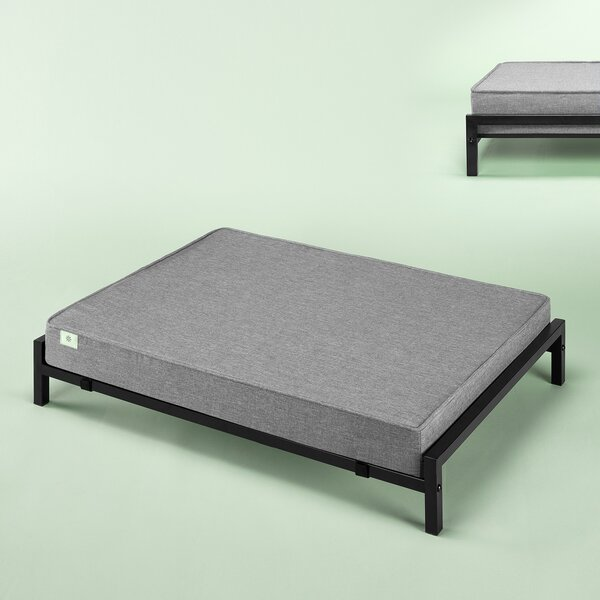 Elevated Cot by Zinus