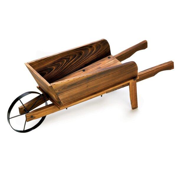 Fir Wheelbarrow Planter by Zingz & Thingz