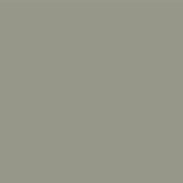 Element 24 x 24 Porcelain Tile in Wind Grey Polished by Walkon Tile