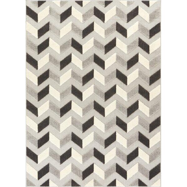 Dorado Bela Modern Geometric/Chevron High-Low Gray Indoor/Outdoor Area Rug by Well Woven