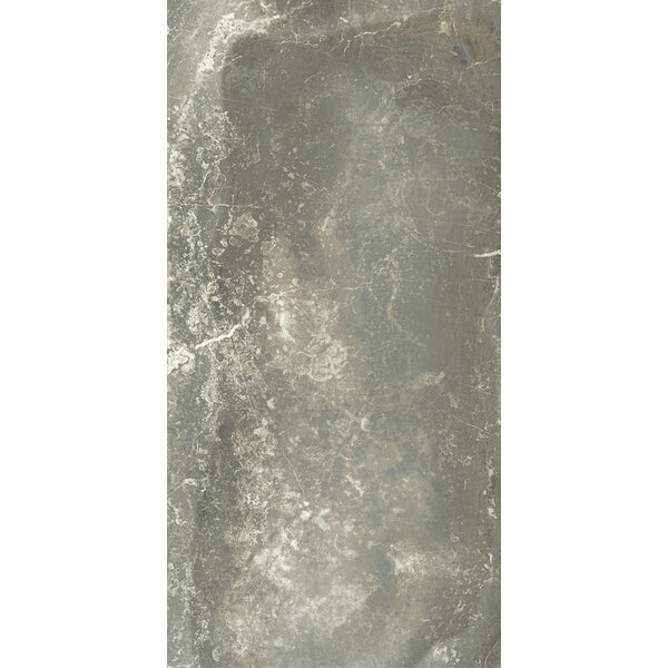 Anthology 12 x 24 Porcelain Field Tile in Antracite by Tesoro