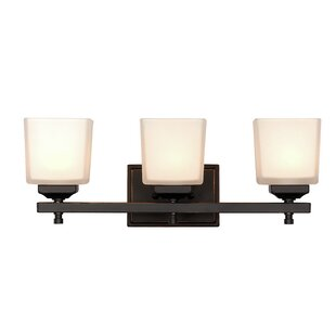 Savings Waltham 3-Light Vanity Light By Darby Home Co