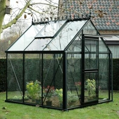 Junior 8 Ft. W x 12 Ft. D Greenhouse by Janssens of Belgium