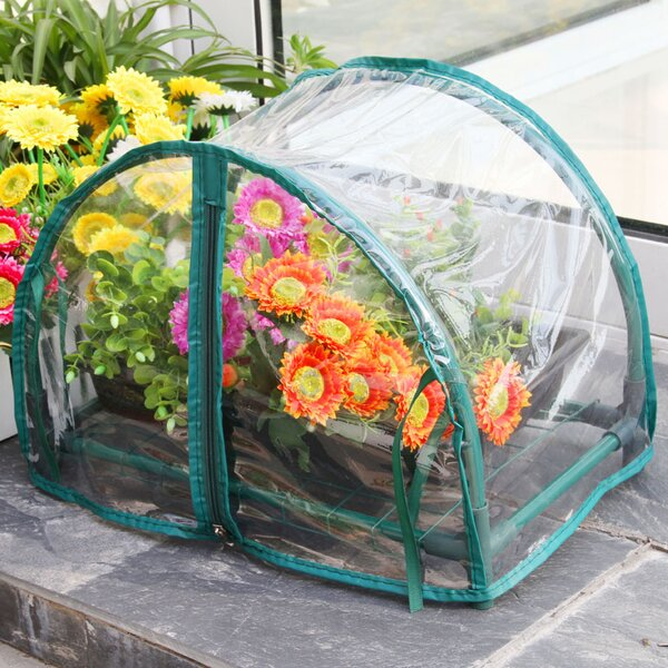 1.5 Ft. W x 1 Ft. D Mini Greenhouse by Zenport
