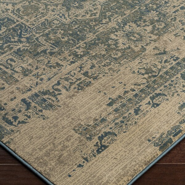 Argentine Blue/Beige Area Rug by Bungalow Rose