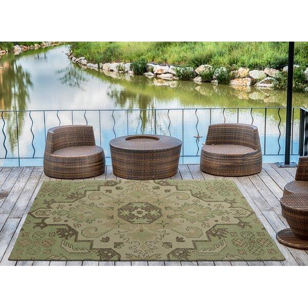 Fairhaven Handmade Green Indoor/Outdoor Area Rug by Charlton Home